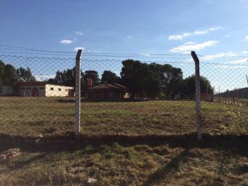 Comprar Terreno / Área em Mirassol apenas R$ 4.500.000,00 - Foto 13