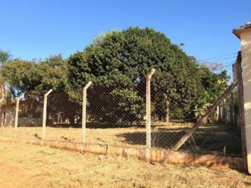 Comprar Terreno / Área em Mirassol apenas R$ 4.500.000,00 - Foto 15