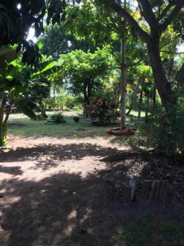 Comprar Rural / Chácara em São José do Rio Preto R$ 600.000,00 - Foto 8