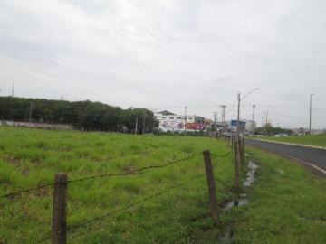Sao Jose do Rio Preto Jardim dos Seixas Area Locacao R$ 12.000,00  Area do terreno 1979.19m2