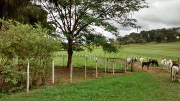 Mirassol Area Rural de Mirassol Rural Venda R$2.400.000,00  Area do terreno 484000.00m2