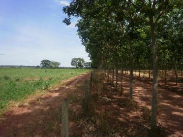 Ipigua Centro Rural Venda R$1.500.000,00  Area do terreno 169400.00m2