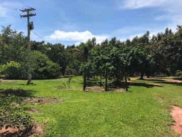 Guapiacu CENTRO Rural Venda R$2.000.000,00 2 Dormitorios  Area do terreno 290400.00m2