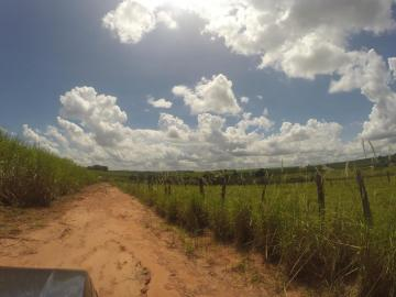 Sao Jose do Rio Preto Vila Azul (Zona Rural) Rural Venda R$7.700.000,00 2 Dormitorios  Area do terreno 168497.00m2