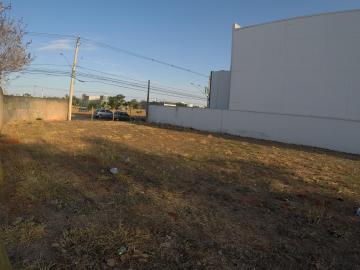 Comprar Terreno / Área em SAO JOSE DO RIO PRETO apenas R$ 3.804.480,00 - Foto 4