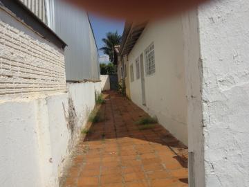 Alugar Casa / Padrão em São José do Rio Preto R$ 500,00 - Foto 13