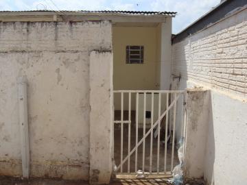 Alugar Casa / Padrão em São José do Rio Preto R$ 500,00 - Foto 15