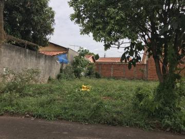 Comprar Terreno / Padrão em SAO JOSE DO RIO PRETO apenas R$ 90.000,00 - Foto 4