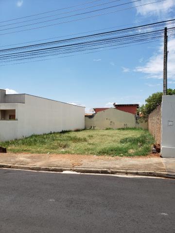 Mirassol CELINA DALUL Terreno Venda R$100.000,00  Area do terreno 306.00m2