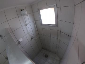 Alugar Apartamento / Padrão em SAO JOSE DO RIO PRETO apenas R$ 750,00 - Foto 11