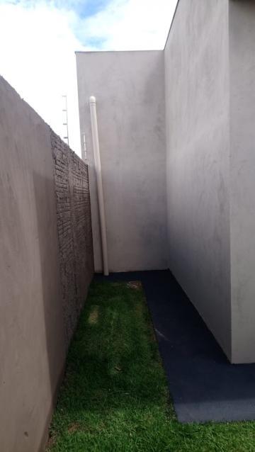 Alugar Casa / Padrão em São José do Rio Preto R$ 600,00 - Foto 8