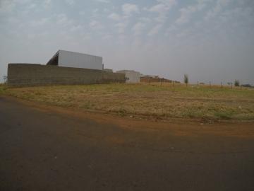 Bady Bassitt Borboleta II Terreno Venda R$134.000,00  Area do terreno 307.50m2