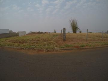 Bady Bassitt Borboleta II Terreno Venda R$136.000,00  Area do terreno 311.60m2