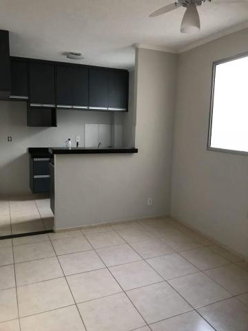 Comprar Apartamento / Padrão em São José do Rio Preto R$ 155.000,00 - Foto 16