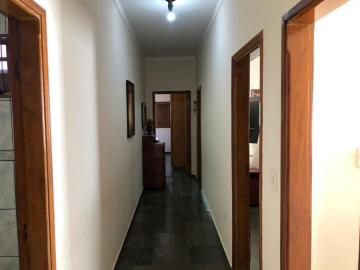 Alugar Casa / Padrão em São José do Rio Preto R$ 1.700,00 - Foto 6