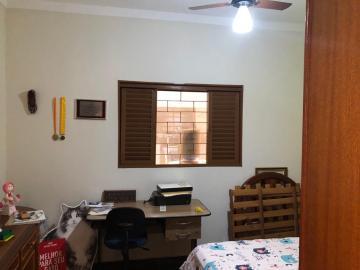 Alugar Casa / Padrão em São José do Rio Preto R$ 1.700,00 - Foto 10