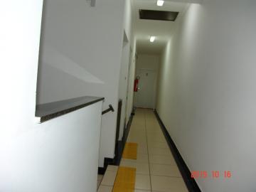 Alugar Comercial / Sala em São José do Rio Preto apenas R$ 550,00 - Foto 3