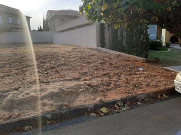 Comprar Terreno / Condomínio em São José do Rio Preto apenas R$ 460.000,00 - Foto 12