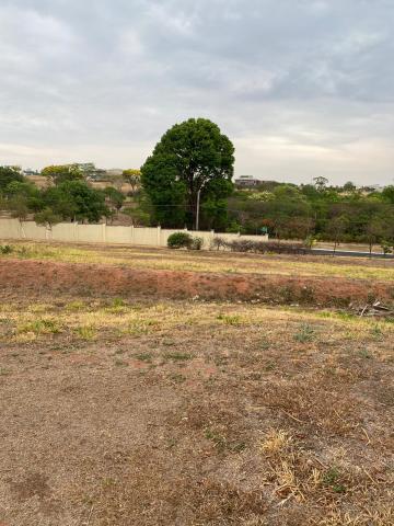 Comprar Terreno / Condomínio em São José do Rio Preto R$ 1.000.000,00 - Foto 1