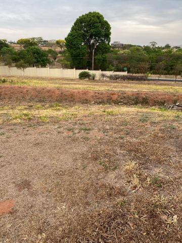 Comprar Terreno / Condomínio em São José do Rio Preto R$ 1.000.000,00 - Foto 3