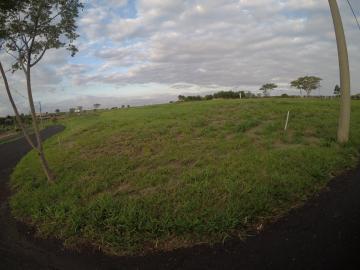 Comprar Terreno / Condomínio em São José do Rio Preto apenas R$ 800.000,00 - Foto 7