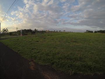 Comprar Terreno / Condomínio em São José do Rio Preto apenas R$ 800.000,00 - Foto 1