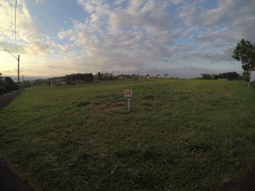 Comprar Terreno / Condomínio em São José do Rio Preto apenas R$ 800.000,00 - Foto 12