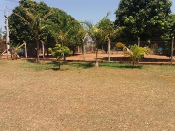 Cedral Estancia Alves Rural Venda R$550.000,00 3 Dormitorios  Area do terreno 1250.00m2 Area construida 246.00m2