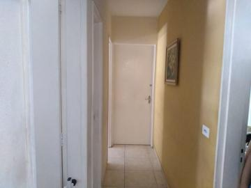 Comprar Apartamento / Padrão em São José do Rio Preto apenas R$ 440.000,00 - Foto 3