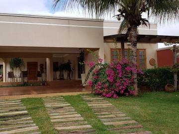 Cedral Estancia Bortoluzzo Rural Venda R$650.000,00 3 Dormitorios  Area do terreno 1000.00m2 Area construida 480.00m2