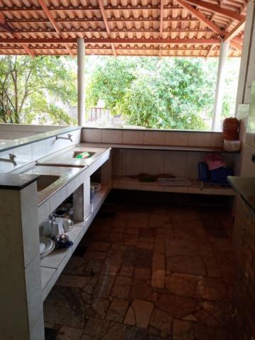Comprar Rural / Chácara em São José do Rio Preto R$ 650.000,00 - Foto 17