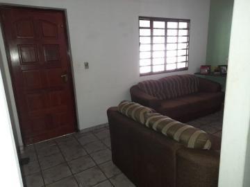 Comprar Rural / Chácara em São José do Rio Preto R$ 650.000,00 - Foto 22