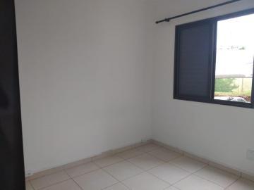 Alugar Apartamento / Padrão em São José do Rio Preto apenas R$ 800,00 - Foto 5