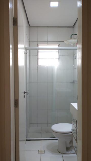 Alugar Apartamento / Padrão em São José do Rio Preto apenas R$ 795,00 - Foto 18