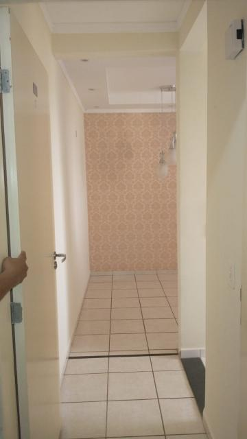 Alugar Apartamento / Padrão em São José do Rio Preto apenas R$ 795,00 - Foto 13