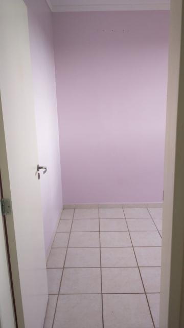 Alugar Apartamento / Padrão em São José do Rio Preto apenas R$ 795,00 - Foto 11