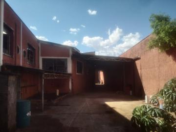 Sao Jose do Rio Preto Jardim Alto Alegre Salao Locacao R$ 20.000,00  Area do terreno 6000.00m2 Area construida 2680.00m2