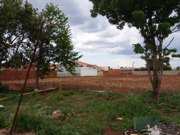Comprar Terreno / Área em São José do Rio Preto apenas R$ 4.000.000,00 - Foto 4