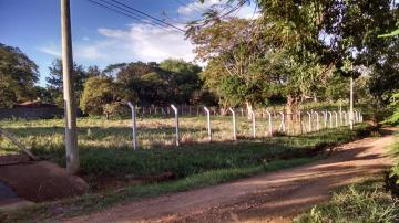 Comprar Rural / Chácara em São José do Rio Preto apenas R$ 996.657,00 - Foto 3