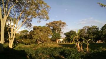 Comprar Rural / Chácara em São José do Rio Preto apenas R$ 996.657,00 - Foto 7