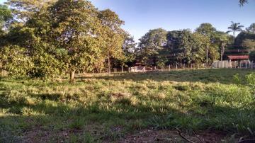 Comprar Rural / Chácara em São José do Rio Preto apenas R$ 996.657,00 - Foto 8