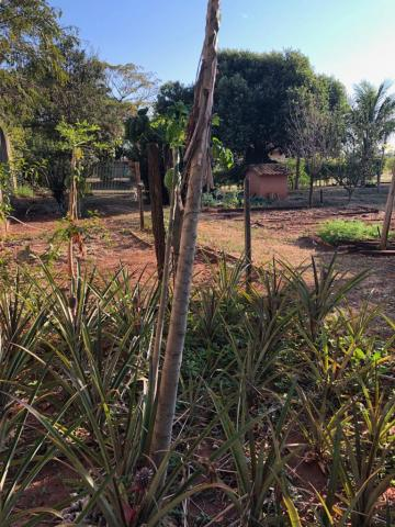 Comprar Casa / Condomínio em Mirassol R$ 2.500.000,00 - Foto 30