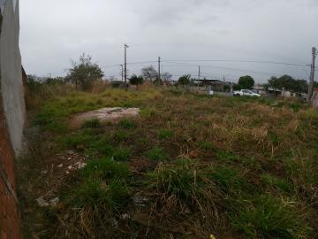 Comprar Terreno / Padrão em SAO JOSE DO RIO PRETO apenas R$ 350.000,00 - Foto 6
