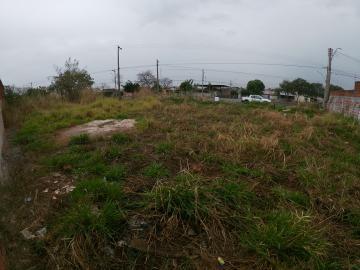 Comprar Terreno / Padrão em SAO JOSE DO RIO PRETO apenas R$ 350.000,00 - Foto 7
