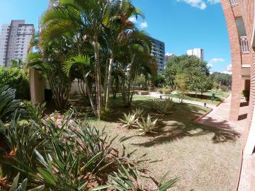 Alugar Apartamento / Padrão em SAO JOSE DO RIO PRETO apenas R$ 2.500,00 - Foto 35