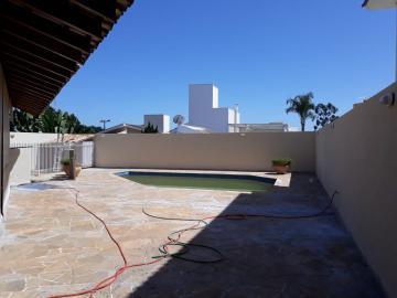 Alugar Casa / Condomínio em SAO JOSE DO RIO PRETO apenas R$ 4.800,00 - Foto 1