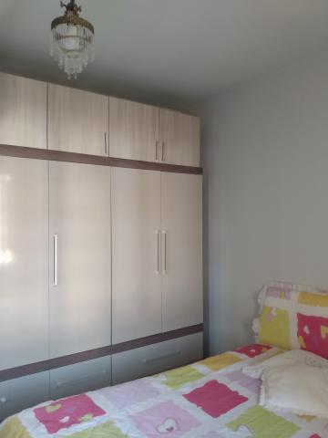 Comprar Casa / Condomínio em SAO JOSE DO RIO PRETO apenas R$ 220.000,00 - Foto 17