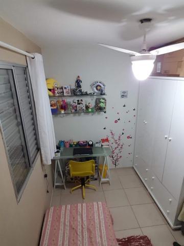 Comprar Apartamento / Padrão em SAO JOSE DO RIO PRETO apenas R$ 180.000,00 - Foto 3