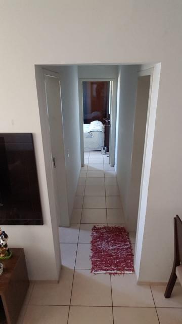 Comprar Apartamento / Padrão em SAO JOSE DO RIO PRETO apenas R$ 180.000,00 - Foto 4