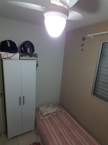 Comprar Apartamento / Padrão em SAO JOSE DO RIO PRETO apenas R$ 180.000,00 - Foto 9